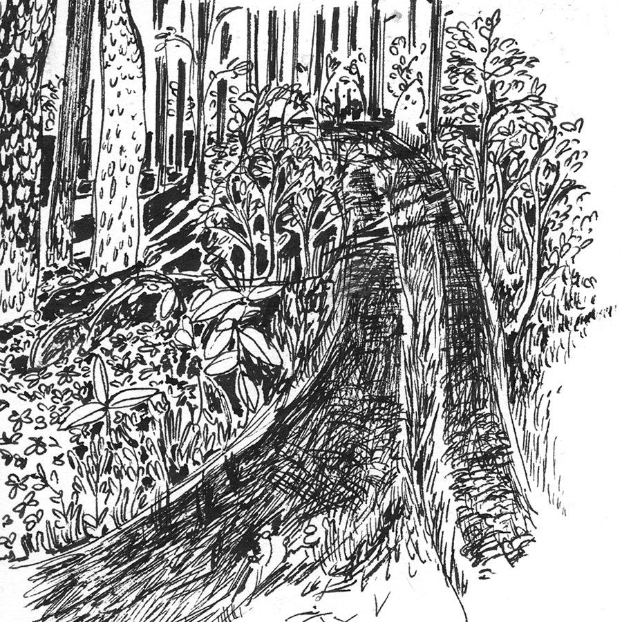 Metsätie, road in the Forest, Finland sketchbook 2015 summer