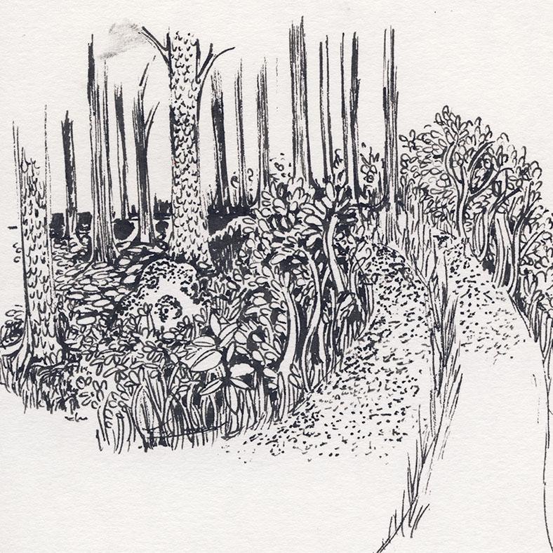metsätie, road in the forest, sketchbook 2015